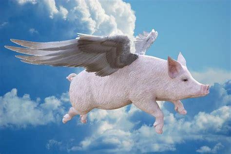 Schweine mit Flügeln war ein italienischer Teene-Popper-Porno